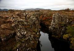 Nikulásargjá - Coin canyon (Vala Run) Tags: canon300d þingvellir