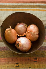 weathered (mwhammer) Tags: pink stilllife food orange brown color texture grey hole display object vegetable explore earthy copper weathered rough cloth tear irregular shallot propstyling foodstyling melinahammer tabletopstyling