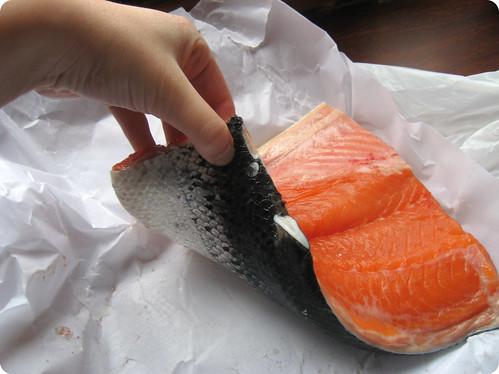 Foto de la cola de salmon