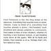 Jonny Zeller|2B Fred Flintstone.jpg