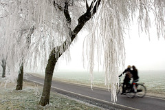 Frosty Friends from Holland (woodypix) Tags: friends holland tree girl bike landscape fun friend frost thenetherlands abc schoolgirls egmond 1on1 bakkum vob arem egmondbinnen hallem zanddijk goldstaraward golsstaraward dfpro digifotopro