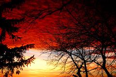 Roiling Red Clouds (lmayer33) Tags: trees sunset sky lake ice nikon smoky sds landscapre d40 ysplix