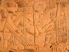 Egypt-5B-051 - Horus