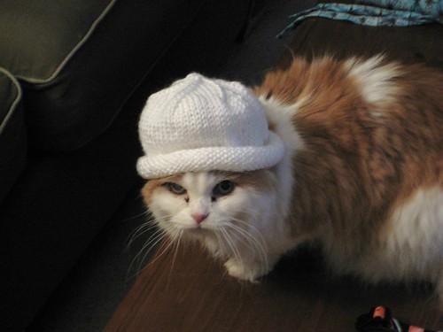 baby hat 021208