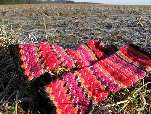 fingerless glove in the fields