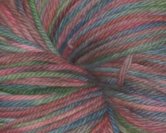 Hatchling on Spirit Organic Merino 4 oz (Spiffy Knits)