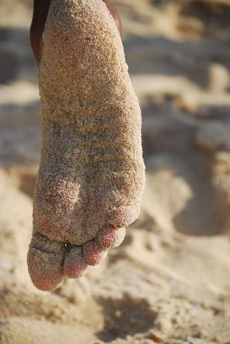 memoirs in sand