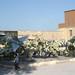 Egypt.2002.12.Cairo.pict0049