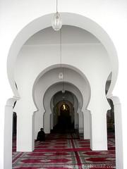 The Qarawyn Mosque (najib SINJER) Tags: mosque morocco fez maroc fes fs   qarawyn