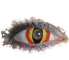 color eye halloween oregon portland