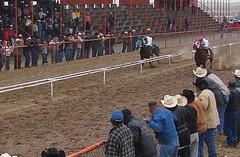 CARRERONON (jesus_alfredo_g) Tags: horses horse chihuahua del race de mexico caballo caballos el desierto veneno carreras carrera ojinaga tarahumara carril carriles