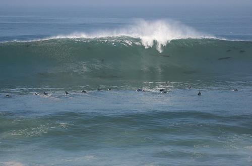 photo de surf 2557