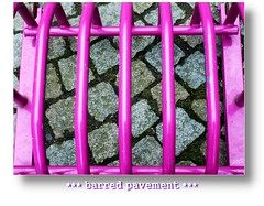 ~ even a pink cage stays a cage ~ (littlenelly (rare but there)) Tags: leica pink lumix artistic pavement expression bec soe bikestand fx10 littlenelly shieldofexcellence theperfectphotographer