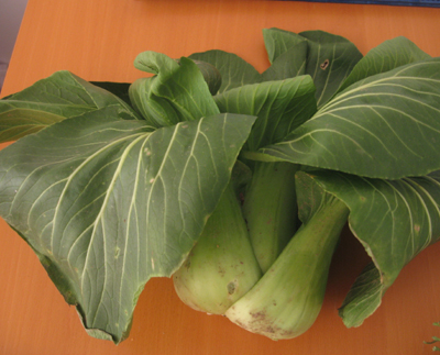 mystery - leafy vegetable