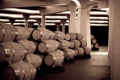 Barrel Room 2 Vivanco