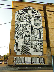 """TUDO O QUE VOC V"" (remed_art) Tags: street art brasil grafiti graff remed"