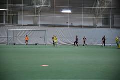 IMG_1629 (tindemus) Tags: ilves p08 värit jalkapallo hipposhalli