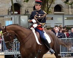 Garde Rpublicaine 2009 - 17 (tripuniforme) Tags: paris france 1025fav europe boots bottes travelguide visittheworld gendarmerie greatphotos garderpublicaine republicanguard thebestofflickr cavalryboots portesouvertesgarderpublicaine2009 bottesdecavalier