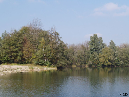 Nussdorf im Herbst