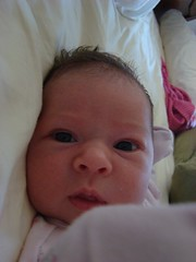 Sadie, 3 weeks