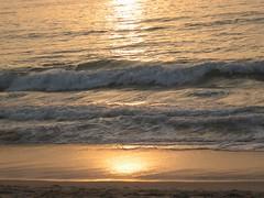 deserto-oceano (lacalha) Tags: sunset sea sun sol portugal mar leiria vieira pordesol goldstaraward