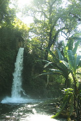 Eduardo Ruiz National Park, Uruapan
