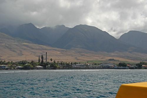 Maui 37