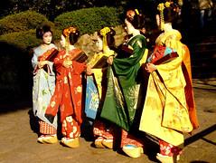Maiko in Chion-in Temple (ericlty) Tags: chionintemple  kyoto  japan maiko  golddragon mamehide mameyuri mametomi kotoha katsumi