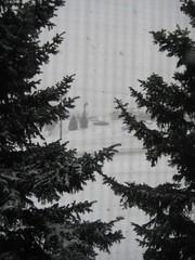 Hello Snow!
