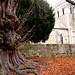 Iffley Church