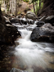 The Chute (Muzzlehatch) Tags: california trees nature wet water creek forest landscape dawn rocks natural angeles rustic canyon national millard flowing pasadena 2008 nwf theperfectphotographer inttag