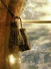lace and tassels (moocatmoocat) Tags: light window lace curtain moo tassel tassels 244
