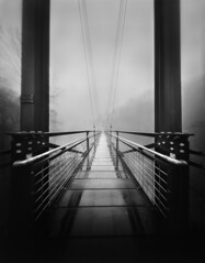 Foot Bridge in the Mist - 4x5 Film Pinhole Photograph (integrity_of_light) Tags: bw mist film rain blackwhite footbridge pinhole largeformat zeroimage ellicottcity patapsco zero45 1mill beautyis flickrenvy absoluteblackandwhite goldstaraward
