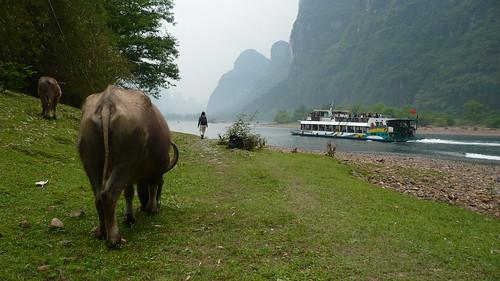 Li River - Between Yangdi and Xingping, China
