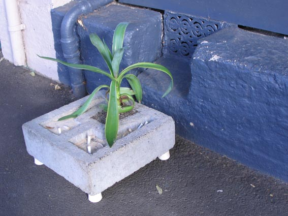 Lively Plane_ashtray--planter