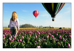 Dreamin' - Hot Air Balloon Rides (jesse.millan) Tags: flowers hot color colors girl beautiful festival oregon balloons portland person shoe ginger wooden interestingness interesting nw colours child purple tulips northwest air balloon megan 100v10f redhead explore tulip pdx moment capture 2008 picturesque westcoast woodburn woodenshoetulipfarm woodenshoetulipfestival explored platinumphoto stopdown woodenshoetulipfestival2008