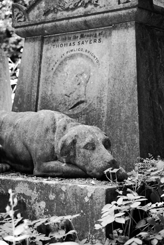 Highgate Cemetery. The tomb of Thomas Sayers,  the boxer. The dog represents his pet,  Lion.