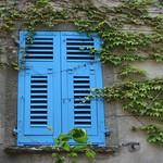 Les volets bleus thumbnail