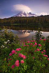 Reflection Lake, Mt. Rainier N.P. (KPieper) Tags: flowers cloud reflection sunrise landscape washington bravo rainier wildflowers mtrainier lenticular reflectionlakes singhray kevinpieper kpieper pieperphotographynet