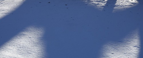 """SnowField Shadows • <a style=""""font-size:0.8em;"""" href=""""http://www.flickr.com/photos/52364684@N03/32834147081/"""" target=""""_blank"""">View on Flickr</a>"""