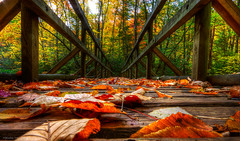 (Malcolm MacGregor) Tags: bridge color fall leaves tennessee falls east explore trail appalachian hampton laruel
