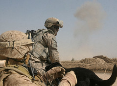 Operation Moshtarak (United States Marine Corps Official Page) Tags: afghanistan usmc military explosion security marines marinecorps patrol unitedstatesmarinecorps humanitarianaid unitedstatesmarines counterinsurgency marinephotos afghannationalarmy marinepictures