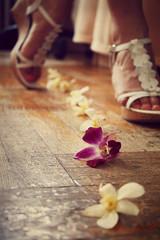 160/365 - Following the Flower Trail (Elvira Kalviste Photography) Tags: flowers selfportrait feet girl beautiful walking photography dof trail 365project t1i elvirasdada 2011inphotos