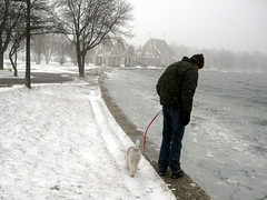 At the edge of the lake (MFMinn) Tags: winter usa dog lake snow storm ice minnesota frozen midwest snowy walk lakes cities freezing minneapolis twin chain harriet wintertime december1