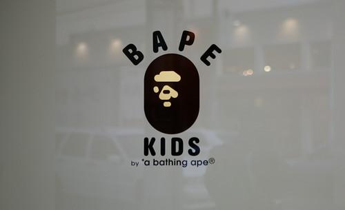 bape-2685