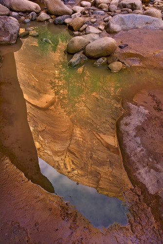 Puddle In Zion