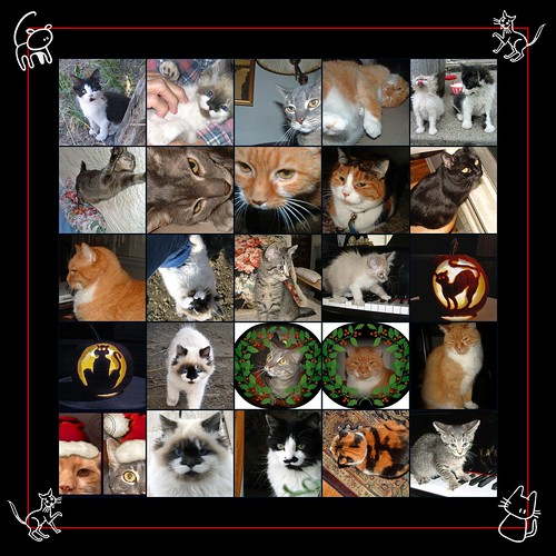 mosaic of cats