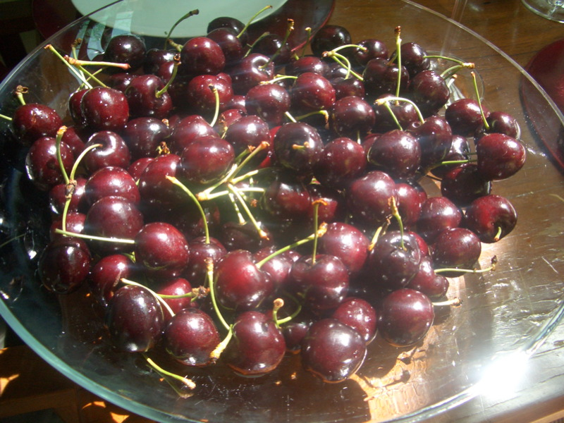 Luscious cherries