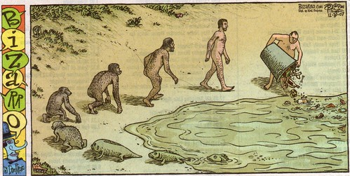 Funny Evolution in pictures