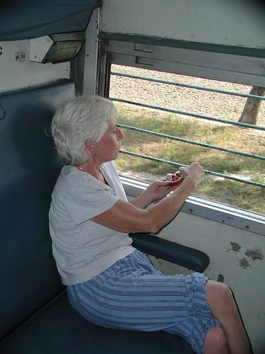 Train to Jhansi